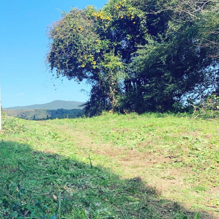ハーブ薬草農園kaoluna